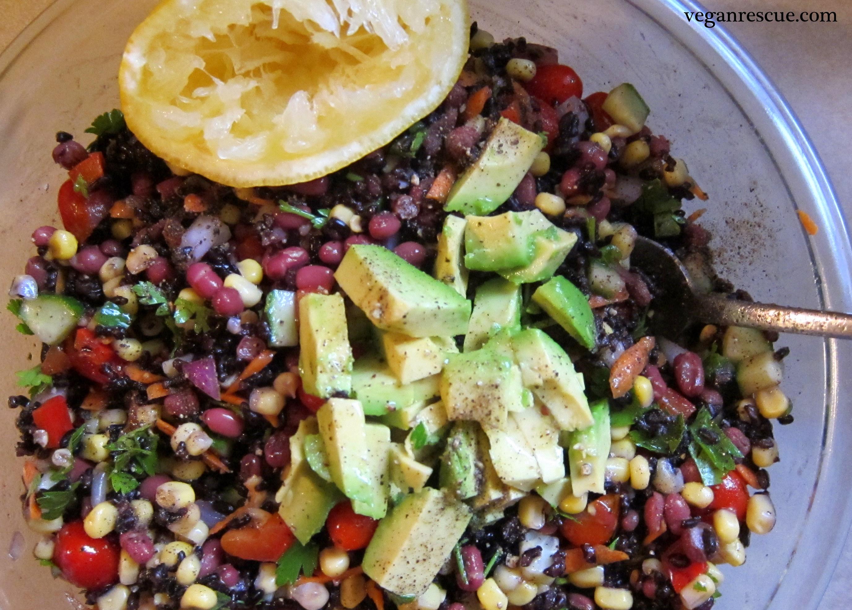 Black Rice and Adzuki Bean Salad – Vegan Rescue